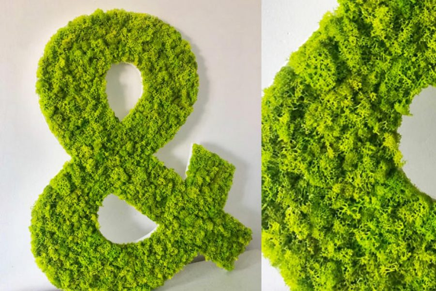 Logo vegetal communication
